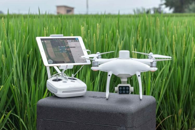 """DJI представила новые сельскохозяйственные дроны и услуги для промышленных клиентов"""""""