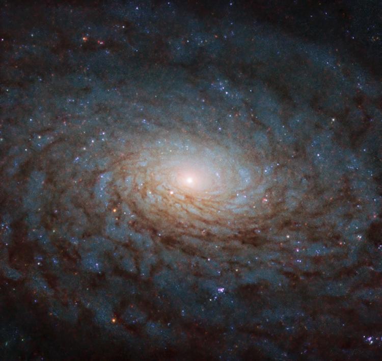 хотели наша галактика во вселенной фото строительстве важную