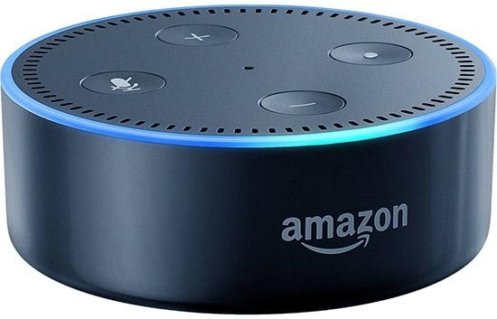 """Голосовые записи с умных колонок Echo Dot станут уликой в деле об убийстве"""""""