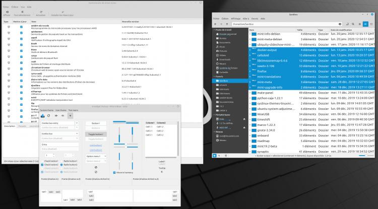Тема Aqua в ОС Linux Mint 20