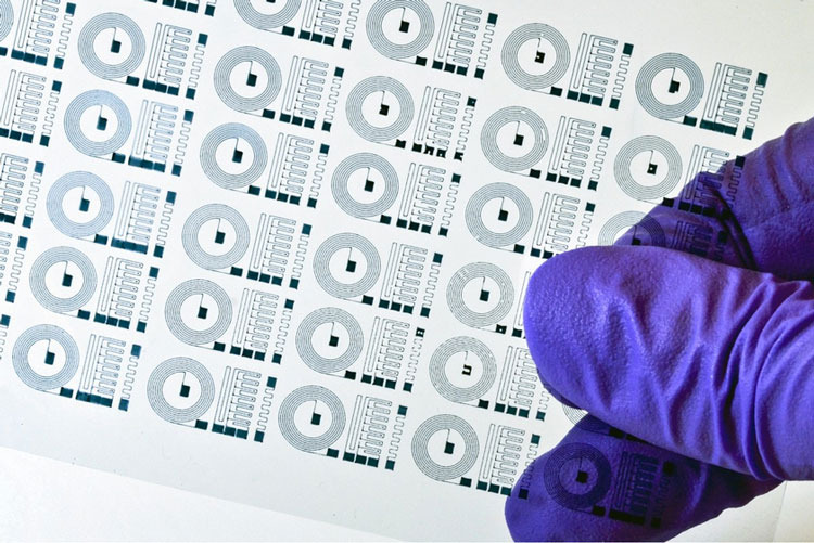 Мягкие электроды для мозга (MIT)