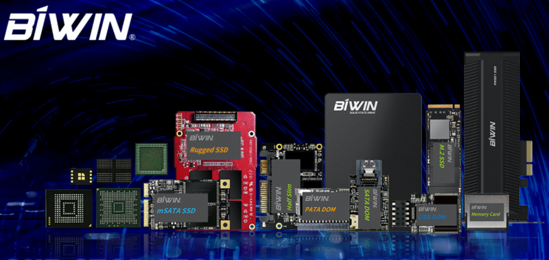 Продукция BIWIN