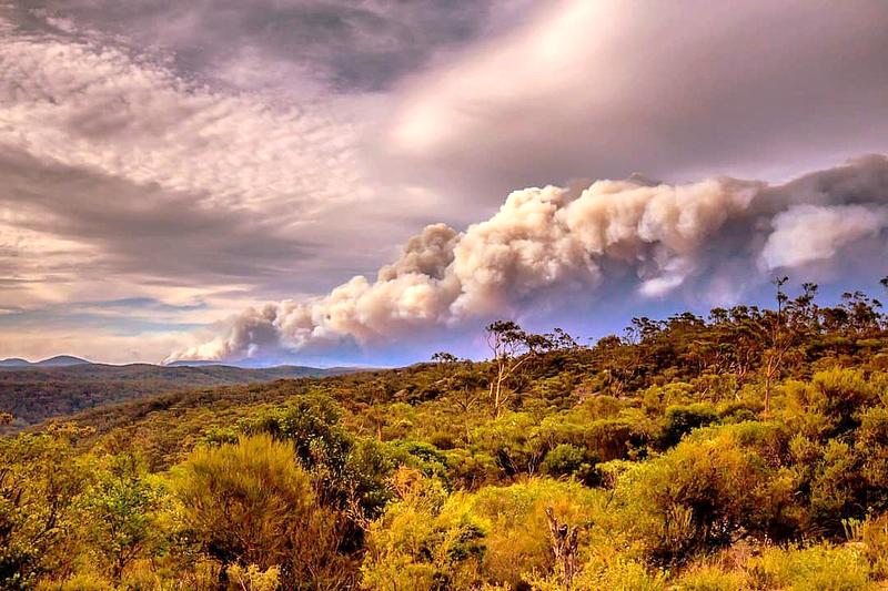 Австралия, декабрь 2019: горизонт затянут дымом от лесных пожаров