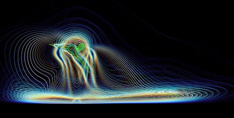 Компьютерное моделирование воздушных потоков вокруг комара (Chiba University/Structure and Motion Laboratory/ RVC)