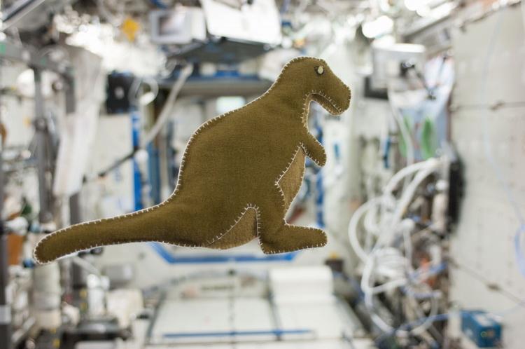 На борту космического корабля SpaceX Crew Dragon обнаружился «третий член экипажа»