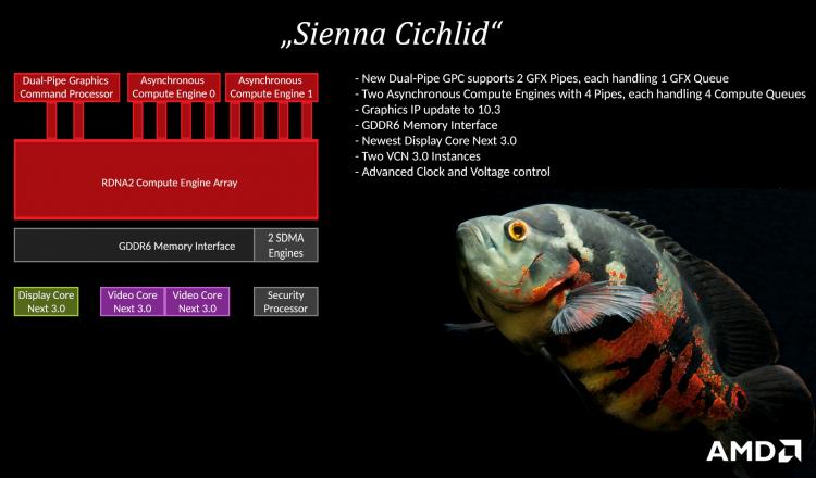sm.AMD_Big_Navi_03.750.jpg