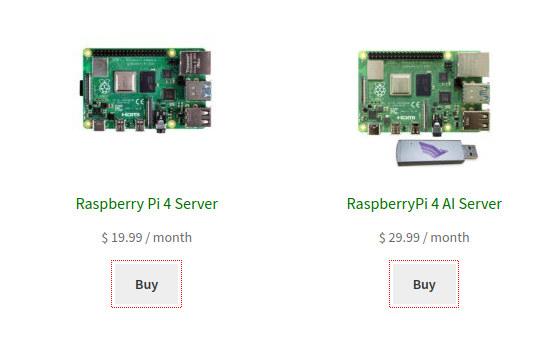 Другие провайдеры также экспериментируют с услугами на базе Raspberry Pi. Доступны даже версии с ИИ-ускорителями