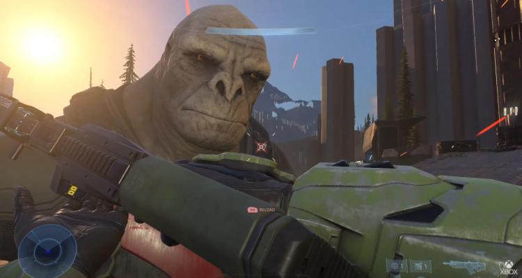 Этого брута из Halo Infinite фанаты в шутку прозвали Крейгом