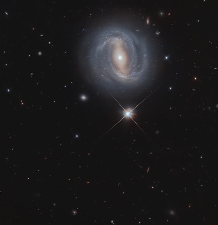 Фото дня: спиральная галактика с перемычкой анфас