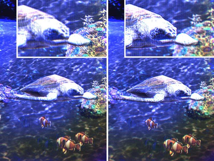 Изображение объёмных объектов при наблюдении на голографическом дисплее Samsung (камера сфокусирована на разную глубину изображения, справа на ближние объекты, слева на дальние). Источник изображения: Samsung