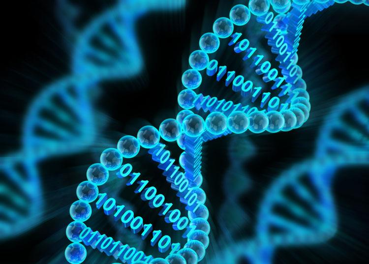 Природный жёсткий диск: Western Digital и Microsoft будут развивать системы хранения данных на ДНК