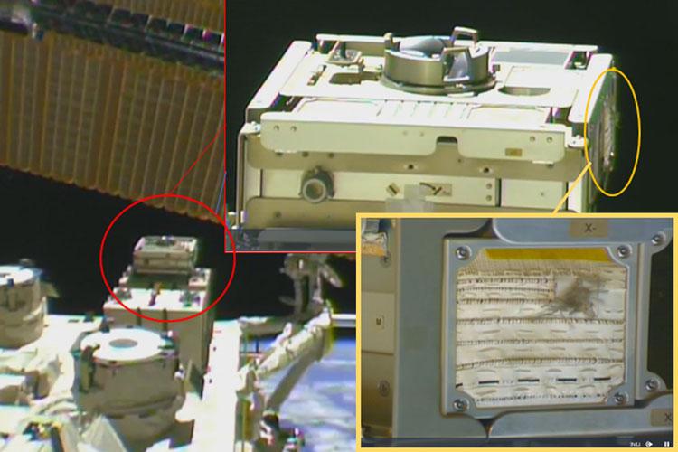 Панель с образцами ткани в открытом космосе на японском модуле на борту МКС. Источник изображения: JAXA/Space and edited by MIT New