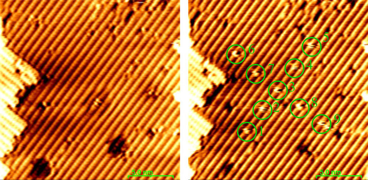 Справа показана пластина со слоем атомов водорода, а справа — с извлечёнными из слоя атомами водорода. Источник изображения: University of Texas at Dallas