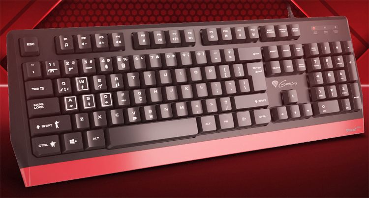 Доступная клавиатура Genesis Rhod 250 адресована начинающим любителям игр