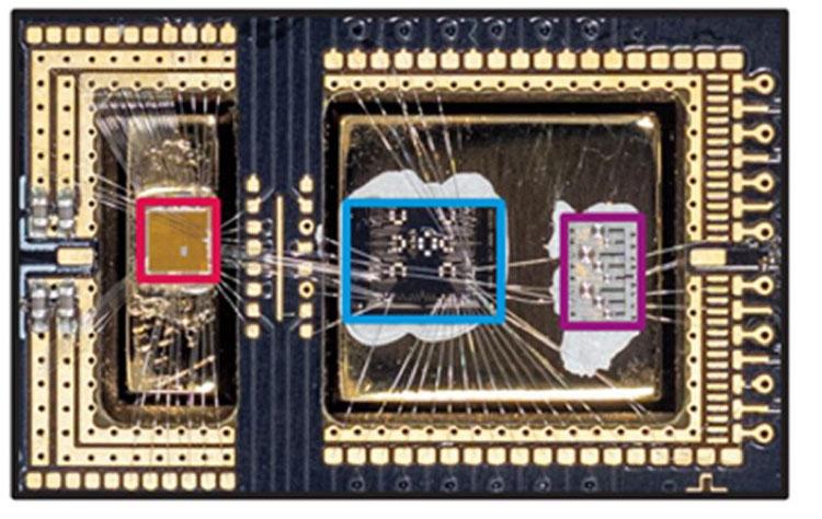 Красным обведён криогенный контроллер Gooseberry, синим — тестовый кубит, фиолетовым — резонатор. Источник изображения: Microsoft