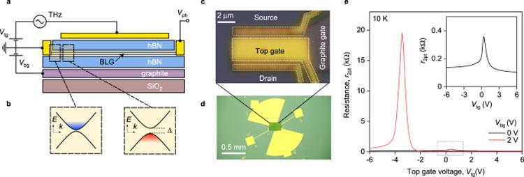 Графеновый туннельный транзистор  в качестве терагерцового детектора. Источник изображения: Nature Communications