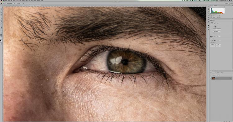 Растянутое через Super Resolution изображение 22409×16807 в масштабе 100% в Adobe Photoshop