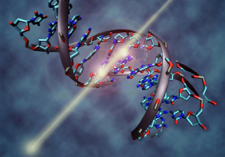Рисунок изображает, как радиационная частица вызывает разрыв ДНК (NASA)