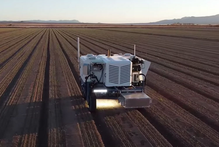 Создан сельскохозяйственный робот для выжигания сорняков лазерами