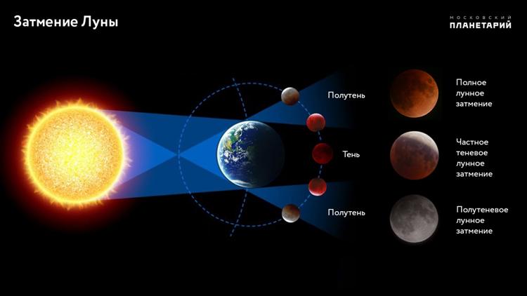 Здесь и ниже изображения Московского планетария