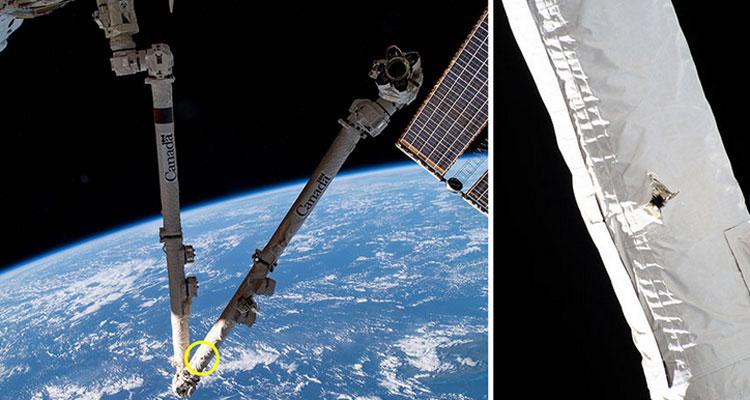 Источник изображения: NASA/Canadian Space Agency