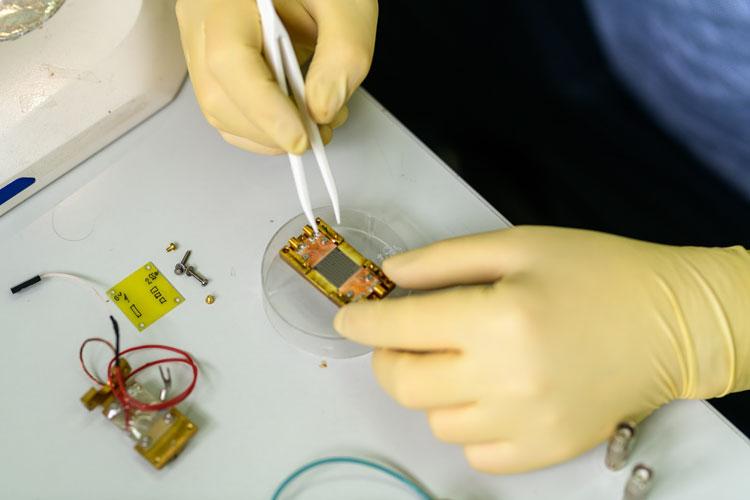 """Российские учёные придумали, как связывать квантовые компьютеры разных типов в единую систему"""""""