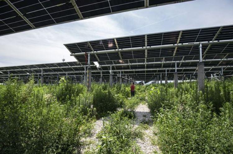 Солнечная ферма в китайском Тунчуане