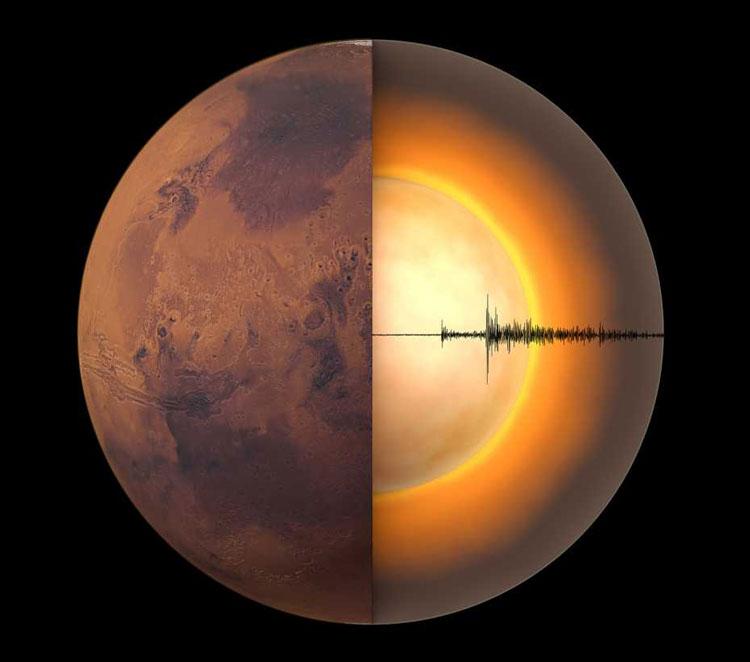 Источник изображения: Chris Bickel/Science