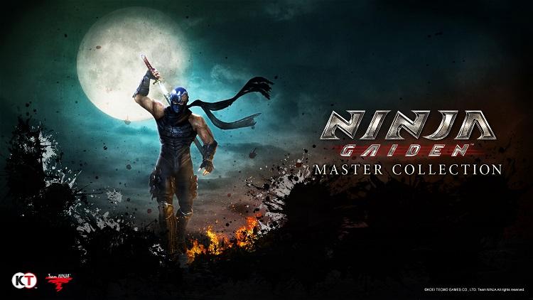 Источник изображения: Team Ninja