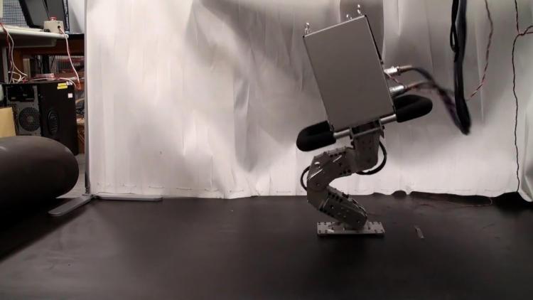 В Японии создали недорогого одноногого робота, который способен удержаться на качающейся поверхности