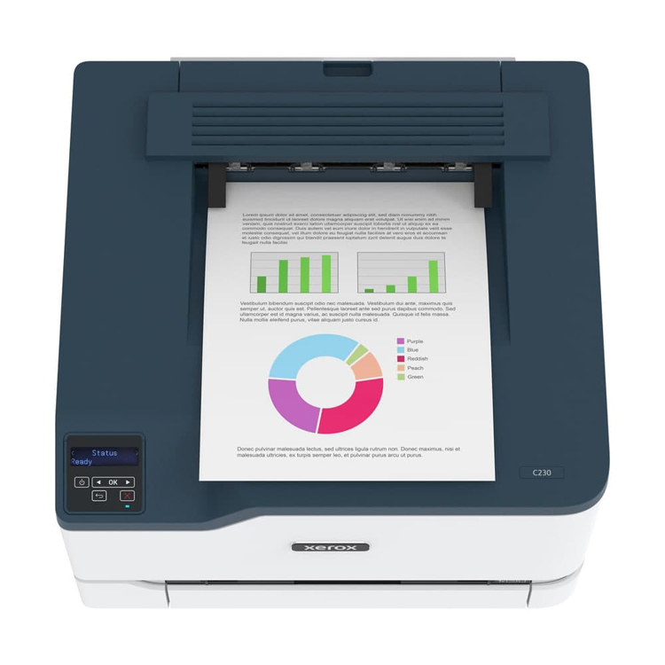 Здесь и ниже изображения Xerox