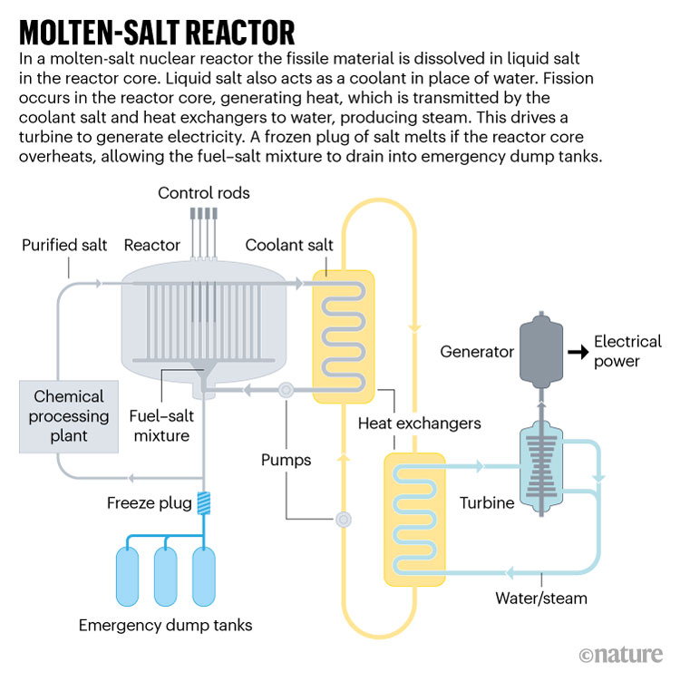 Условная схема жидкосолевого реактора. Источник изображения: US Department of Energy/International Atomic Energy Agency