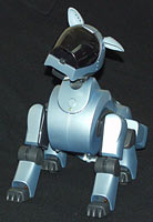 Команды и способности собаки-робота Айбо, какие команды знает Aibo и что умеет делать